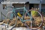 vente vélo route Bianchi